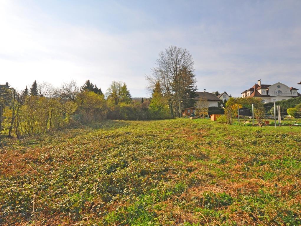 ABSOLUT RUHIG gelegenes VILLENGRUNDSTÜCK am ÖDBERG, Weidling/Klosterneuburg