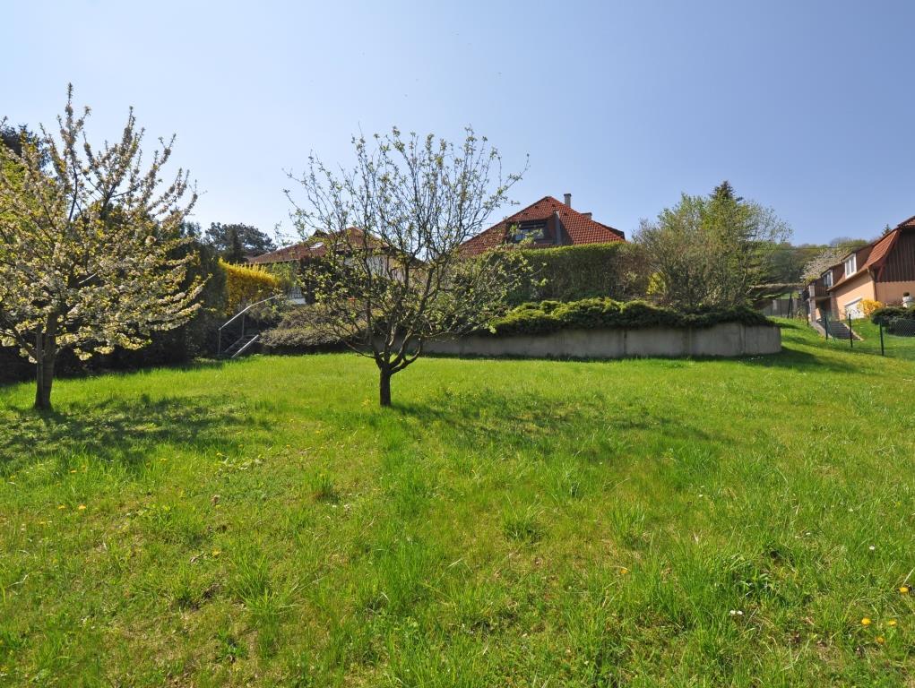 EINFAMILIENHAUS mit GROSSEM GARTEN, POOL und FERNBLICK in Kritzendorf/Klosterneuburg