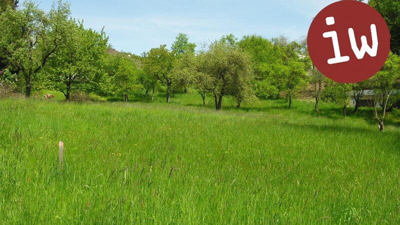 Schönes, sonniges, ebenes Grundstück in Weidlingbach! Objekt_586 Bild_40
