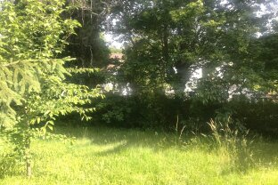 Grundstück in Grünruhelage Nähe Lainzer Tiergarten