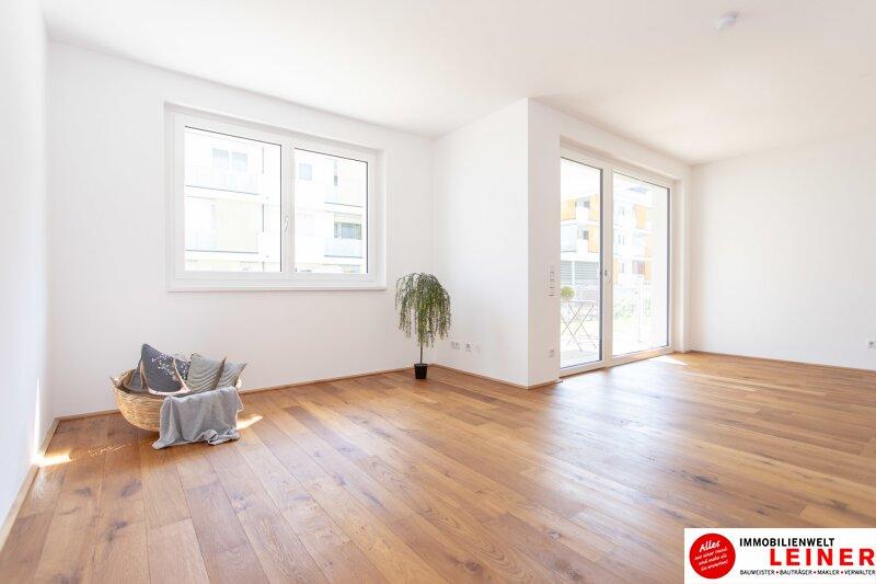 *UNBEFRISTET*Schwechat - 4 Zimmer Mietwohnung mit 140 m² großem Garten und Terrasse Objekt_9163