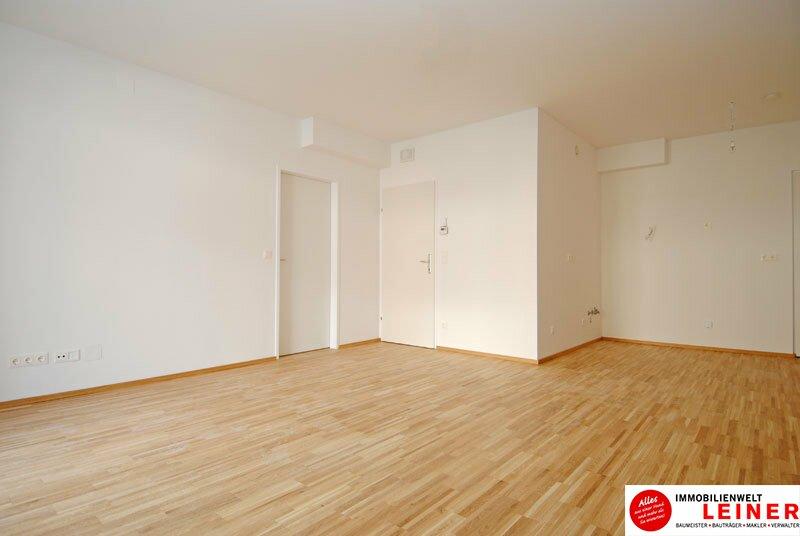 52m² Büro im Neubau mit schönem Garten und Terrasse Objekt_8907 Bild_885