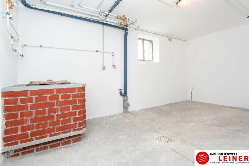 Schwechat: Erdgeschoss in saniertem Einfamilienhaus zu mieten Objekt_10789 Bild_269