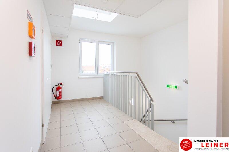 Himberg - Zinshaus mit 4% Rendite zu verkaufen Objekt_9396 Bild_327