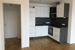 Mittersill - wunderschöne 2 Zimmer Wohnung ab sofort zu vermieten