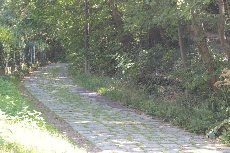 Traumhaftes Baugrundstück am Schafberg /  / 1170Wien / Bild 5