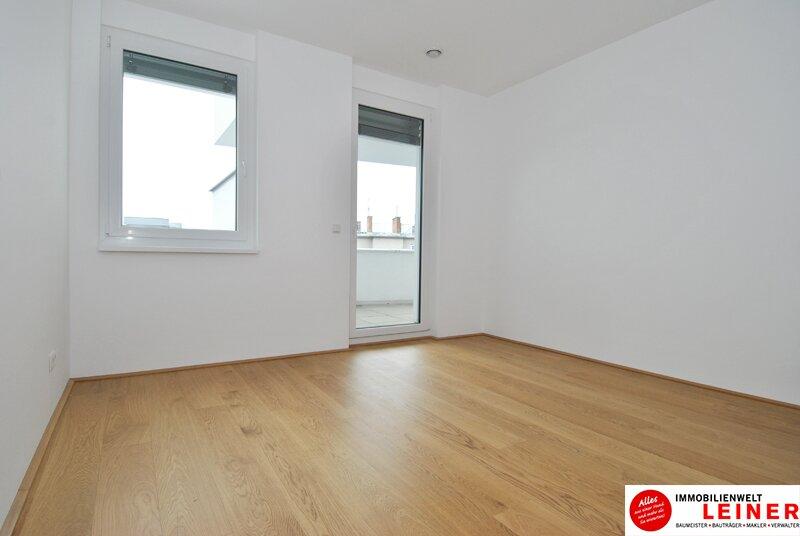 Schwechat - 57 m² Mietwohnung mit Terrasse im Zentrum - Erstbezug Objekt_9320 Bild_683