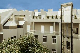 The Rooftop Neighborhood