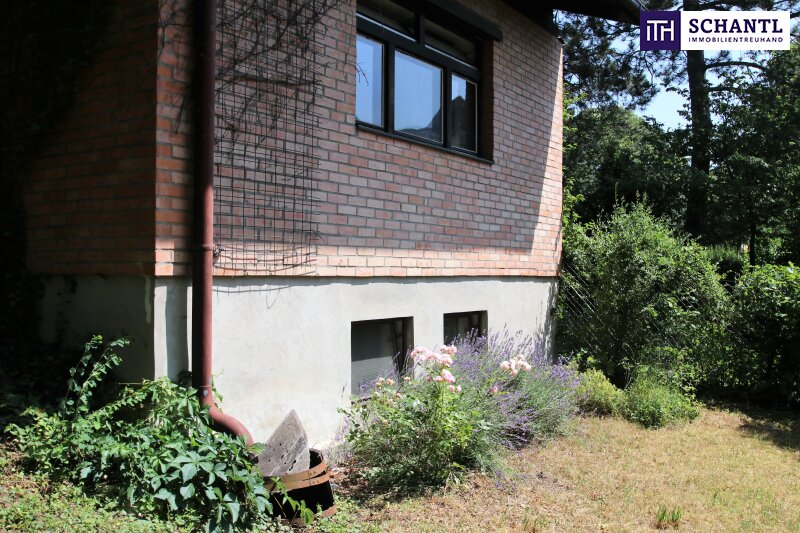 Naturidylle ! Absolute Toplage ! Südseitiges Traumgrundstück mit ausbaubarem Haus in Hinterbrühl ! /  / 2371Hinterbrühl / Bild 12