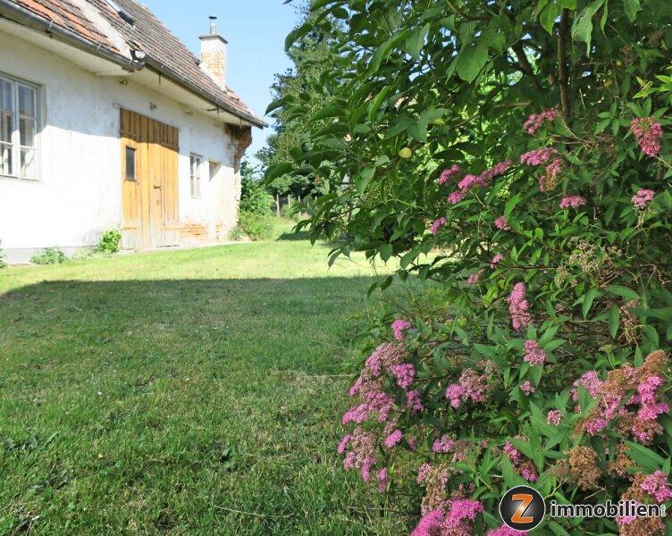 Sanierungsbedürftiges Haus mit wunderschönem Grundstück