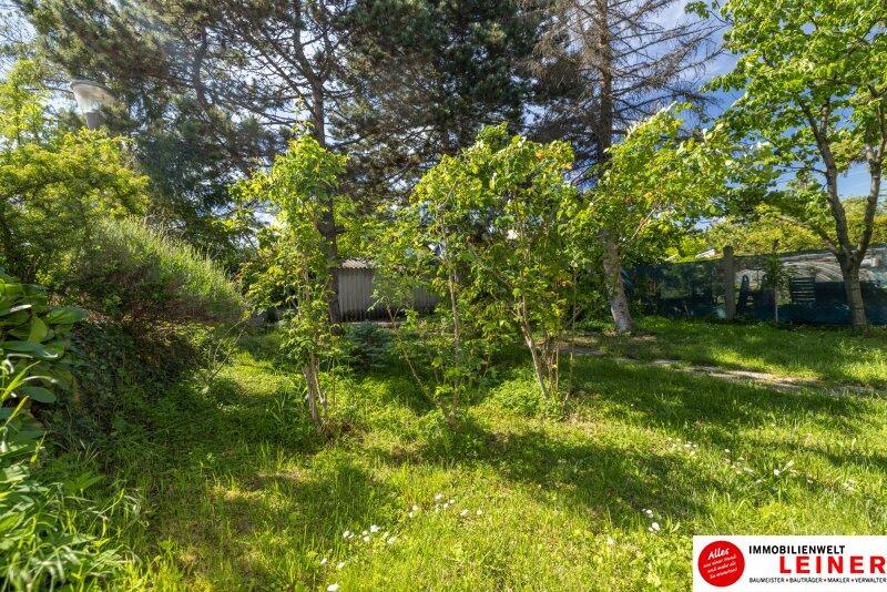 Einfamilienhaus in Schwechat 555m² EIGENGRUND  - den Herbst schon im eigenen Garten verbringen! Objekt_17835 Bild_65