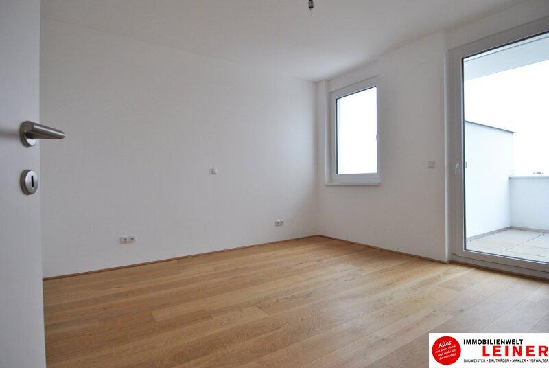 Schwechat - 57 m² Mietwohnung mit Terrasse im Zentrum - Erstbezug Objekt_9290 Bild_482