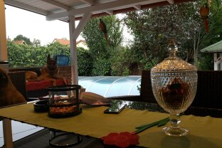 Einfamilienhaus mit Garten + Pool + Sauna + Garage