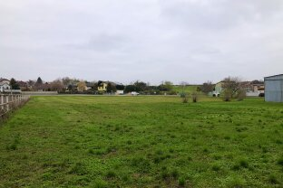 6,1 Kilometer von Wien entfernt - Baugrundstück mit 12.441 m2