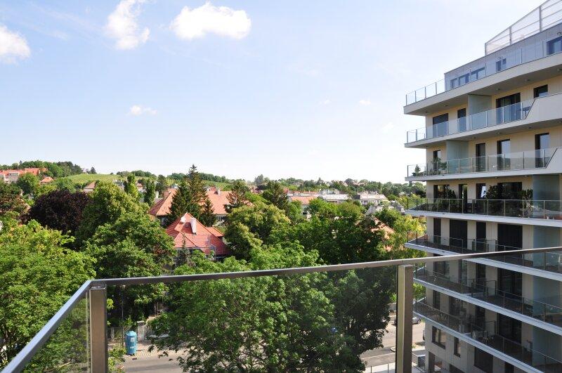 Eigentumswohnung, Pfarrwiesengasse 23, 1190, Wien