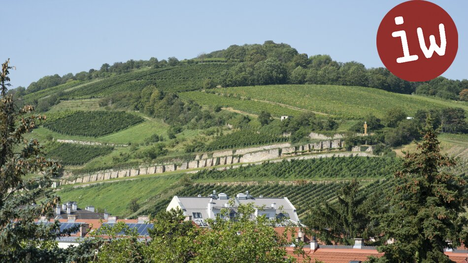 Luxuriöse Stadtvilla, exzellente Zentrumslage, Erstbezug, Grünblick