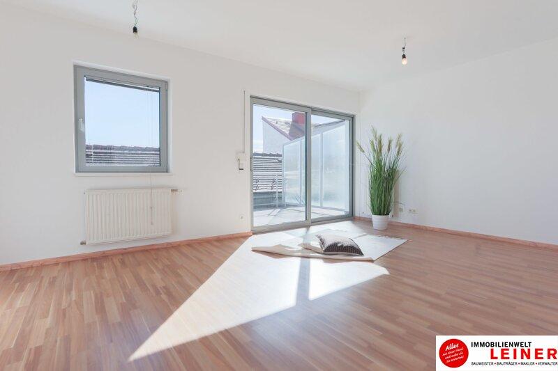 Ebergassing - 3 Zimmerwohnung im Zentrum Objekt_10432 Bild_497