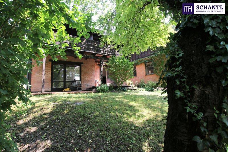 Naturidylle ! Absolute Toplage ! Südseitiges Traumgrundstück mit ausbaubarem Haus in Hinterbrühl ! /  / 2371Hinterbrühl / Bild 17