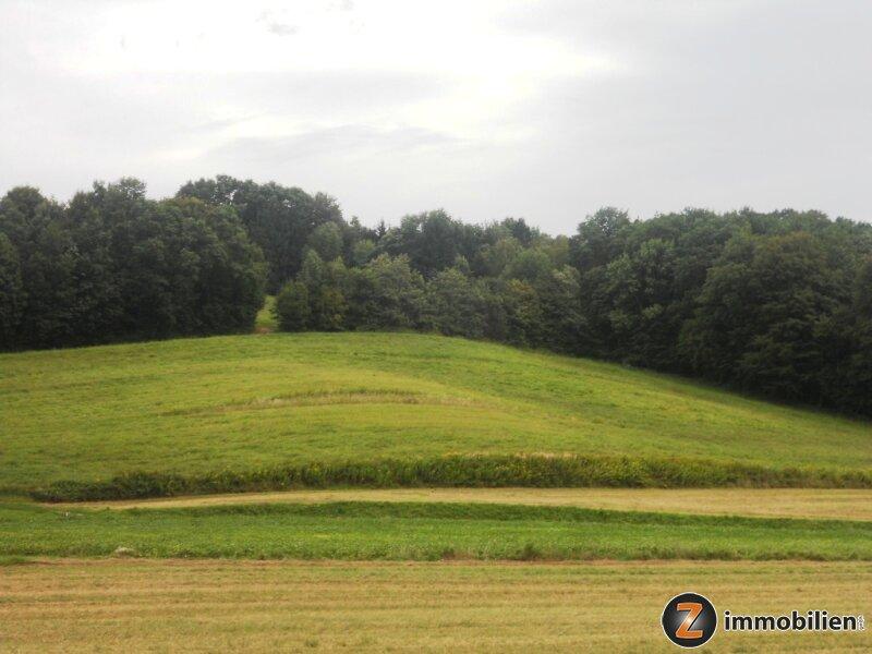 Gemeinde Eltendorf: Landwirtschaftliches Grünland