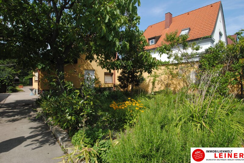 Einfamilienhaus in Schwechat - Endlich genug Platz! Objekt_8935 Bild_814