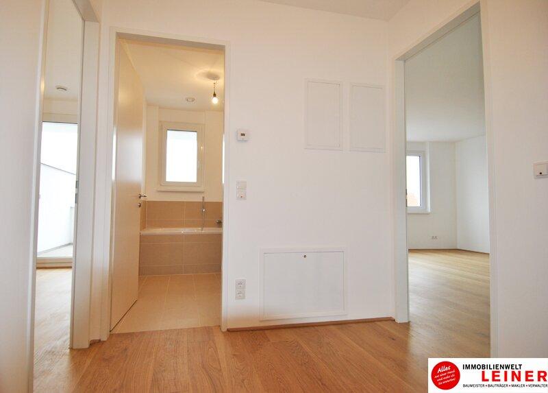 Schwechat - 57 m² Mietwohnung mit Terrasse im Zentrum - Erstbezug Objekt_9290 Bild_486