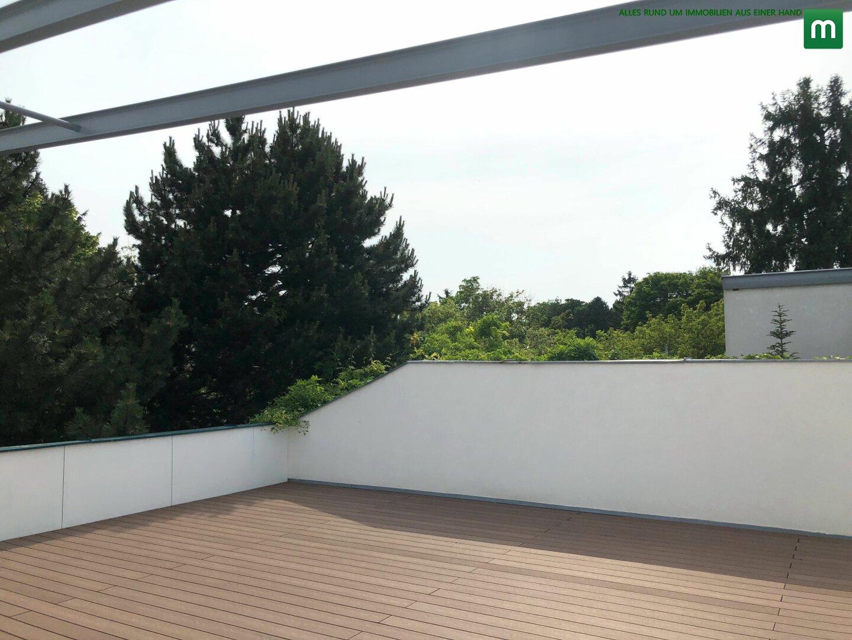Terrasse (7)