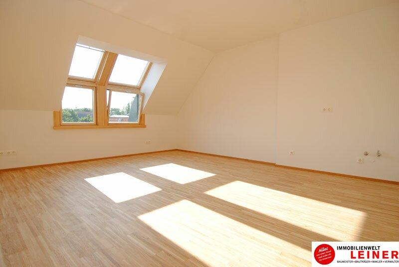 Sonnendurchflutete Dachgeschosswohnung im Herzen von Himberg Objekt_475 Bild_16