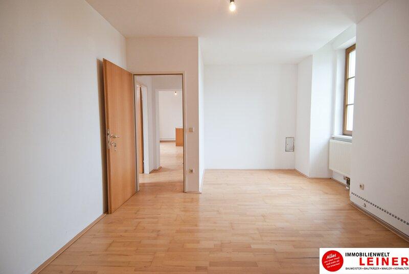 2320 Schwechat - Rauchenwarth: 3 Zimmer Mietwohnung - herrschaftlich wohnen in einem Denkmalgeschütztem Haus mit Garten Objekt_10917 Bild_381