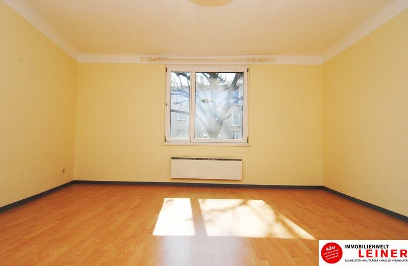Schwechat Eigentumswohnung - 2 sonnendurchflutete Zimmer mit Blick in den liebevoll begrünten Garten Objekt_8776 Bild_433