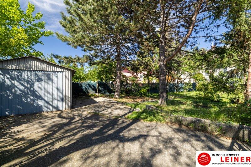 Einfamilienhaus in Schwechat 555m² EIGENGRUND  - den Herbst schon im eigenen Garten verbringen! Objekt_17835 Bild_69