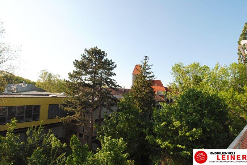 51 m² Mietwohnung in Himberg - hier wird Ihr Wohntraum wahr! Objekt_9686 Bild_761