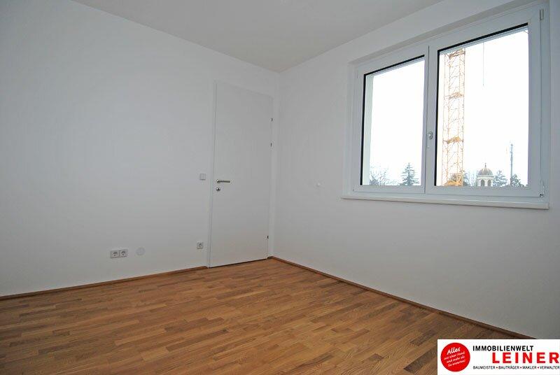 Schwechat - 2 Zimmer Mietwohnung im Erstbezug Objekt_3764 Bild_35