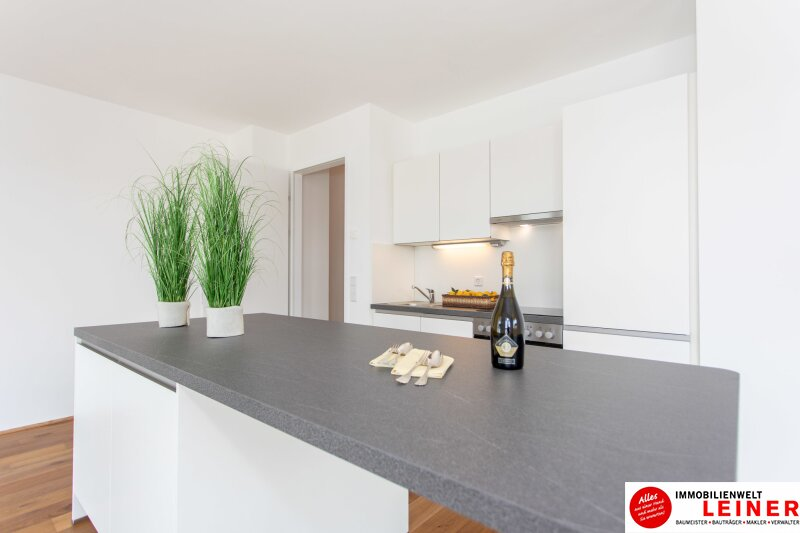 *UNBEFRISTET*Schwechat - 2 Zimmer Mietwohnung im Erstbezug mit großer Terrasse und Loggia Objekt_8692 Bild_131