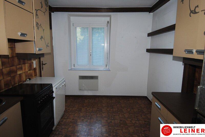 Schwechat - schöne 2 Zimmer -  57m² Mietwohnung nahe dem Zentrum! /  / 2320Schwechat / Bild 5