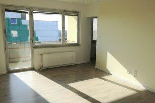 Neu renovierte Eigentumswohnung mit Balkon in Biedermanndorf