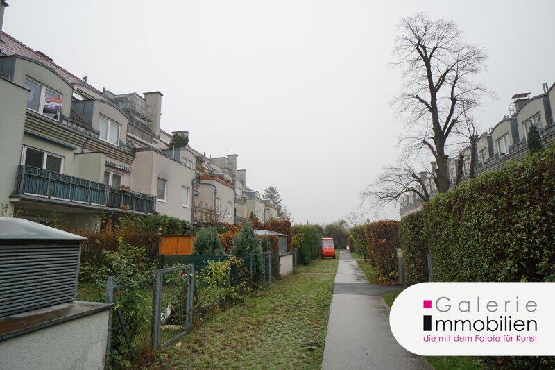 Blick auf Kahlenberg und Bisamberg - Terrassenwohnung im Neubau Objekt_29159 Bild_413