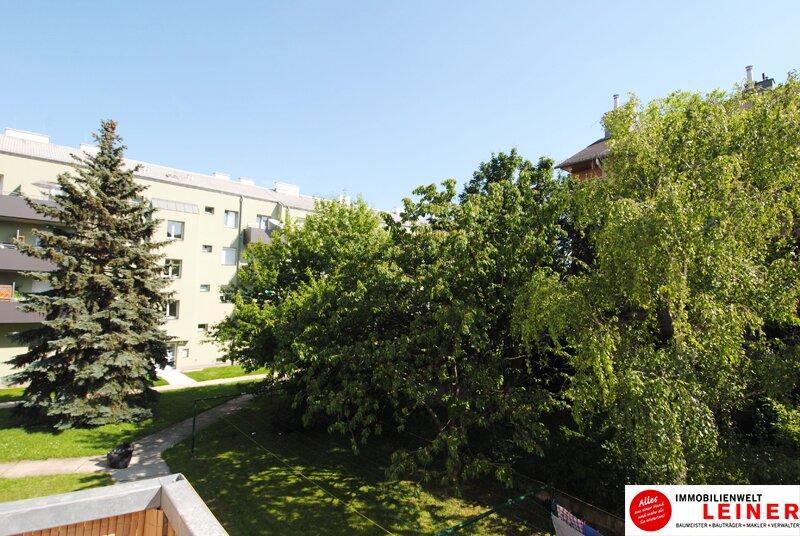 Schwechat - Eigentumswohnung direkt neben dem Schlosspark - hier will ich leben Objekt_9528