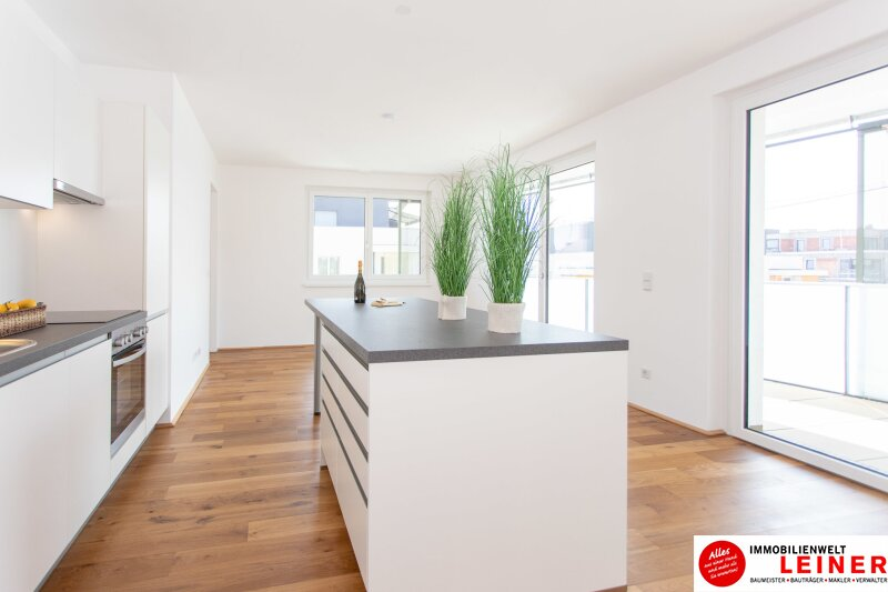 *UNBEFRISTET*Schwechat - 2 Zimmer Mietwohnung im Erstbezug mit großer Terrasse und Loggia Objekt_8692 Bild_133