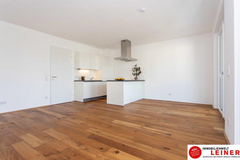 *UNBEFRISTET* 14 m² Terrasse * Schwechat - 2 Zimmer Mietwohnung im Erstbezug mit großer Terrasse Objekt_9162 Bild_856