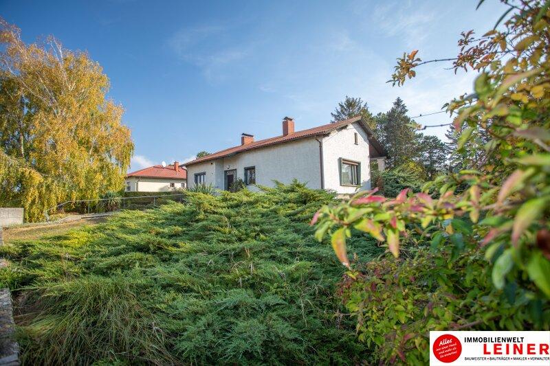 Hof am Leithaberge - 1900 m² Grundstück mit traumhaftem Einfamilienhaus Objekt_10467 Bild_832