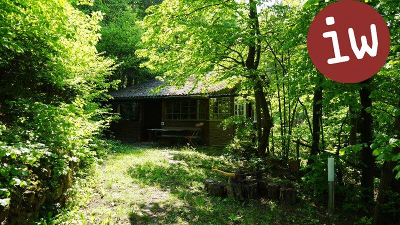 Geräumiges Einfamilienhaus in idyllischer 7.000 m² Grün-Lage mit Blick auf den Ölberg Objekt_377 Bild_88