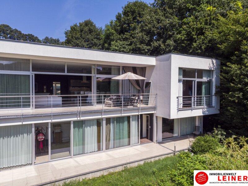 Designervilla in Kaltenleutgeben - einzigartiges Wohnerlebnis Objekt_11229 Bild_388