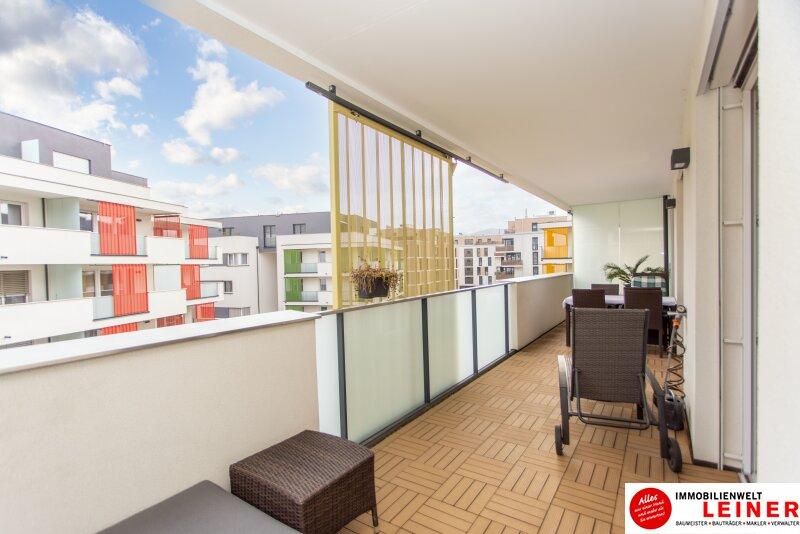 ACHTUNG! KAUFANBOT LIEGT VOR! Schwechat - Eigentumswohnung mit traumhafter, sehr großer Terrasse Objekt_12015 Bild_96