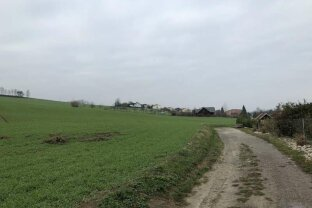 2,1ha Landwirtschaftsgrundstück in Alkoven - Straßham!