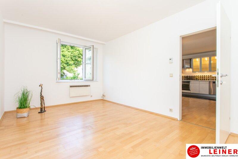 *sofort verfügbar* Mitten im Zentrum - wohnen in Schwechat Objekt_11394 Bild_184