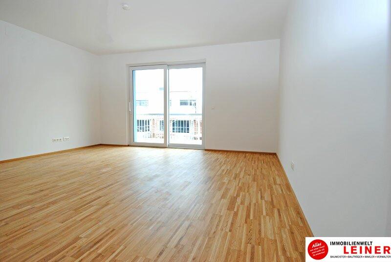 Himberg Zentrum - traumhafte Dachgeschosswohnung mit großzügiger Terrasse! Objekt_506