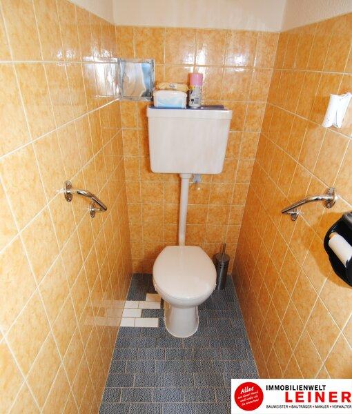 Schwechat Zentrum - sonnige Wohnung mit Terrasse! WG geeignet Objekt_8775 Bild_304