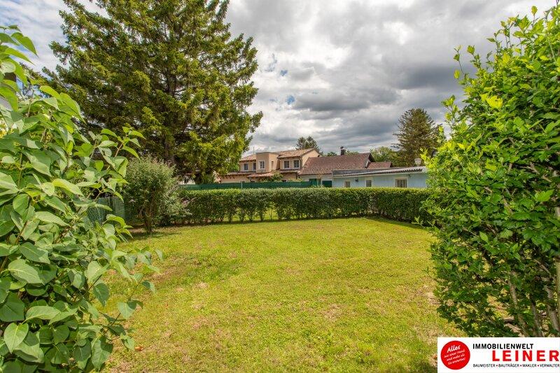 herrliches Grundstück mit 2 Häusern in Rannersdorf Objekt_11049