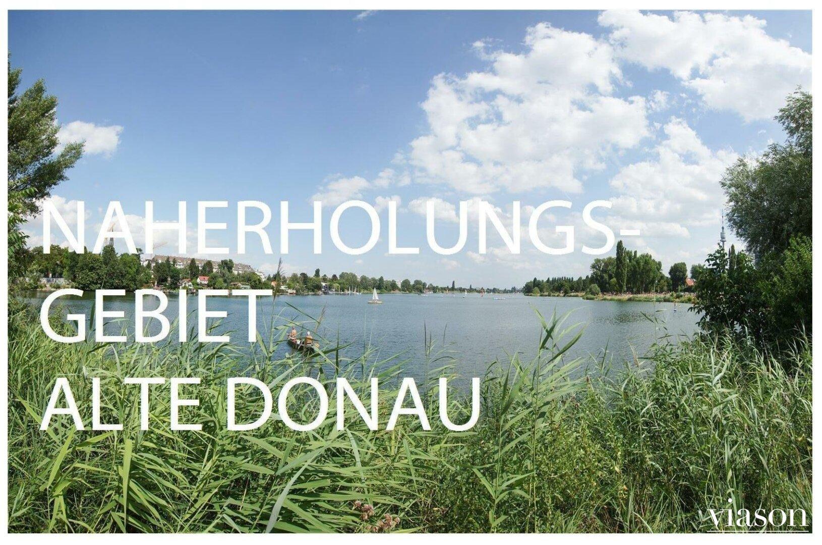 Mit dem Rad zur Alten Donau und Donauinsel