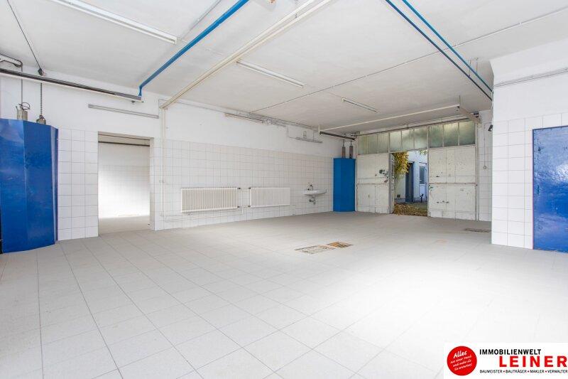 Vereinen Sie Wohnen und Arbeiten an einem Ort: Ihr neues Haus in Hof am Leithaberge Objekt_9962 Bild_165